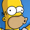 The Simpsons Homer Woho